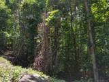 117 Mountain Lily Ridge Road - Photo 17