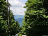 117 Mountain Lily Ridge Road - Photo 22