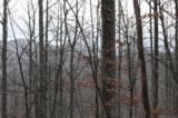 TBD (3.84) Elk Mountain Scenic Highway - Photo 25