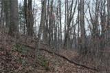 TBD (3.84) Elk Mountain Scenic Highway - Photo 31