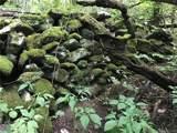 lot R-11 Appaloosa Trail - Photo 5
