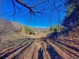 1290 Rabbit Skin Road - Photo 35