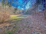 1290 Rabbit Skin Road - Photo 41