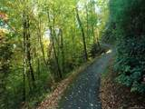 26 Bear Vista Trail - Photo 3