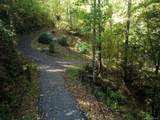 26 Bear Vista Trail - Photo 4