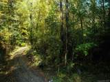 26 Bear Vista Trail - Photo 5