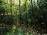 26 Bear Vista Trail - Photo 6