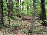 00 Butler Ridge Trail - Photo 2