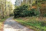 0 Mountain Forest Estates Road - Photo 6