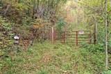 0 Mountain Forest Estates Road - Photo 10