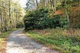 VL313 Mountain Forest Estates - Photo 5