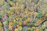 VL313 Mountain Forest Estates - Photo 9