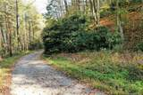 VL74 Mountain Forest Estates - Photo 6