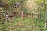 VL302 Mountain Forest Estates - Photo 10