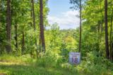 1800 Pisgah Preserve Drive - Photo 3