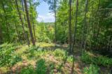 1800 Pisgah Preserve Drive - Photo 4