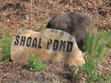 0 Shoal Creek Road - Photo 5
