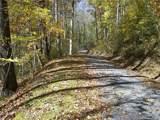 31 Fern Trail - Photo 4