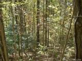 31 Fern Trail - Photo 6