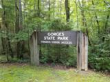 3000 Frozen Creek Road - Photo 3