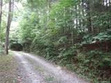 TBD Elm Bend Road - Photo 4