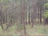 Lot # 21 Spur Alley - Photo 11