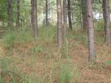 Lot # 21 Spur Alley - Photo 4