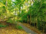 15 Wandering Oaks Way - Photo 27