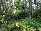 TR106 Ladd Ridge - Photo 3