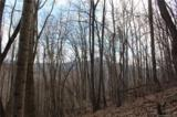 38.54 acres Sams Branch Road - Photo 25