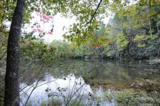 V/L Spring Wheel Drive - Photo 4