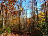 000 Tract 6 Fox Hollow Road - Photo 1