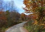 000 Tract 6 Fox Hollow Road - Photo 3