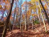 000 Tract 6 Fox Hollow Road - Photo 6