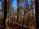 000 Tract 6 Fox Hollow Road - Photo 7