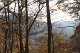 Lot 20 Locust Ridge - Photo 1