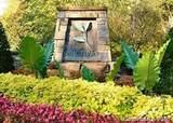 10631 Green Heron Court - Photo 1