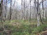 000 Balsam Ridge Road - Photo 4