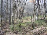 000 Balsam Ridge Road - Photo 7