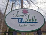 00 Jonathan Trail - Photo 1