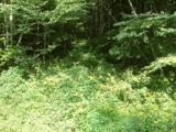 Lot 288 Winding Creek Drive - Photo 10