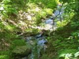 Lot 288 Winding Creek Drive - Photo 18