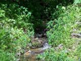 Lot 288 Winding Creek Drive - Photo 20