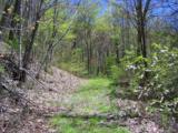 Lot 288 Winding Creek Drive - Photo 3