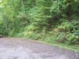 000 Whispering Woods Path - Photo 12