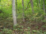 000 Whispering Woods Path - Photo 9