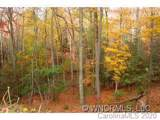 12 Wood Lily Trail - Photo 8