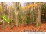 12 Wood Lily Trail - Photo 9