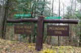 000 Bear River Lodge Trail - Photo 12