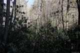 5.14 +/- Acres Oak Ridge Road - Photo 16